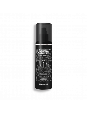 Spray fixant fort 200ml
